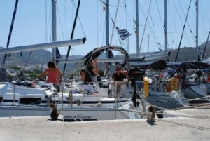 marina where we charter a yacht